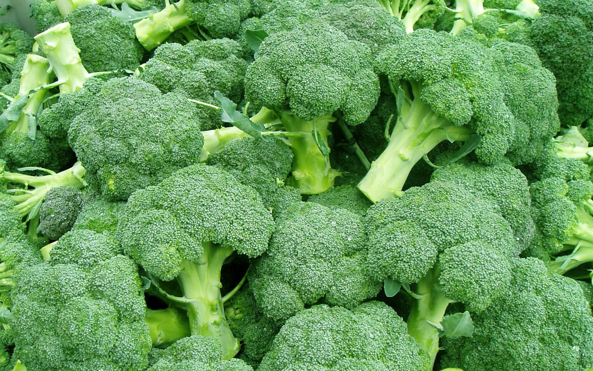 Risultati immagini per broccoli