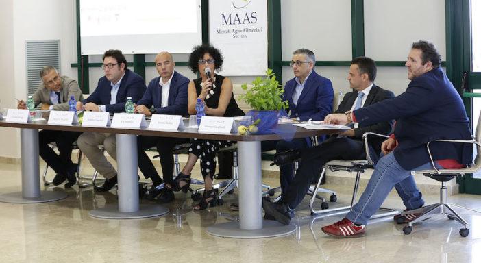 """E-COMMERCE, ARANCIA ROSSA DI SICILIA IN CINA CON ALIBABA. """"MA PROTOCOLLO EXPORT VA MODIFICATO"""""""