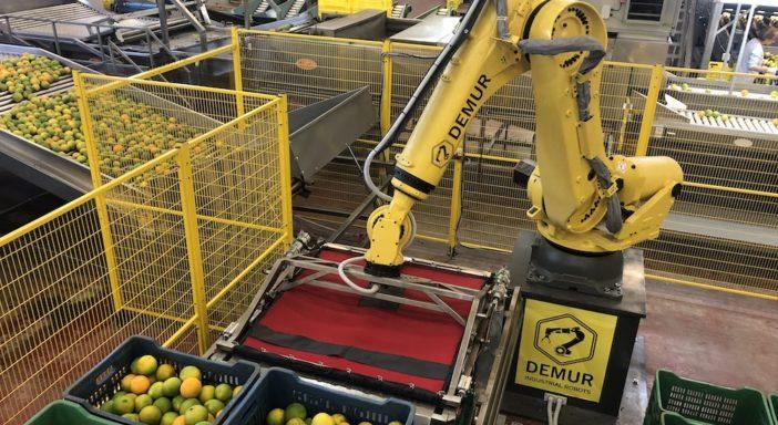 AGRUMI, ROBOT CON INTELLIGENZA ARTIFICIALE GESTISCE FINO A 1.200 CASSETTE ALL'ORA