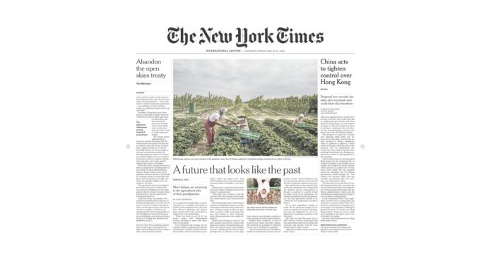 """BELLANOVA IN PRIMA PAGINA SUL NEW YORK TIMES: """"L'AGRICOLTURA PUÒ DARE UN FUTURO AI GIOVANI"""""""